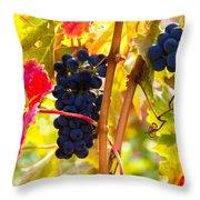 Grapes And Autumn Leaves, Napa California Throw Pillow