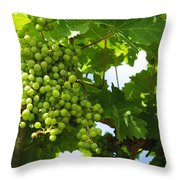 Grapes In A Vineyard Throw Pillow