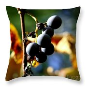 Grapes On The Vine In Square  Throw Pillow by Neal Eslinger