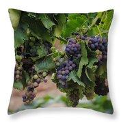 Grapes On Vine Throw Pillow