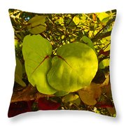 Grapetree Canopy Throw Pillow