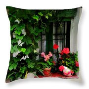 Grapevines And Geraniums Around A Window Throw Pillow