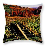 Grapevines In Vineyard, Traverse City Throw Pillow