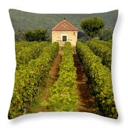 Grapevines. Premier Cru Vineyard Between Pernand Vergelesses And Savigny Les Beaune. Burgundy. Franc Throw Pillow by Bernard Jaubert