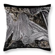 Graphic Ice Throw Pillow