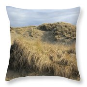 Grass And Sand Dunes Throw Pillow