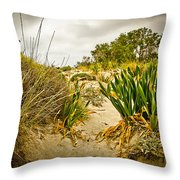 Grass And Sand Of Elafonisi Throw Pillow