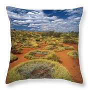 Grass Covering Sand Dunes Throw Pillow