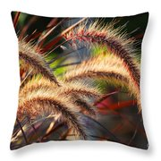 Grass Ears Throw Pillow by Elena Elisseeva