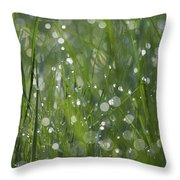 Grass Fairies... Throw Pillow