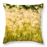 Grass Feathers Throw Pillow
