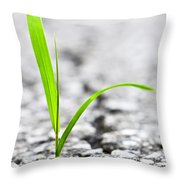 Grass In Asphalt Throw Pillow by Elena Elisseeva