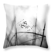 Grass Heavy With Raindrops - Monochrome Throw Pillow