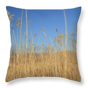 Grass In Motion Throw Pillow