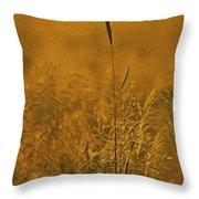 Grass In The Light Of The Rising Sun Throw Pillow