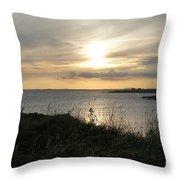 Grass In The Setting Sun Throw Pillow