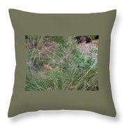 Grass In The Wind Throw Pillow