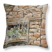 Grass In The Window Throw Pillow