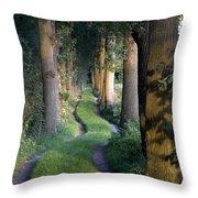 Grass Lane Throw Pillow