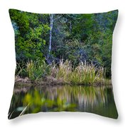Grass On The Water Throw Pillow