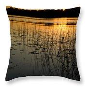 Grass Reflection 2 Throw Pillow