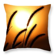 Grasses At Sunset - 2 Throw Pillow