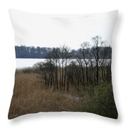 Grasses By The Lake Throw Pillow