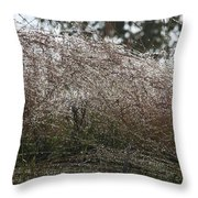 Grasses Glittering With Thousand Of Rain Drops Throw Pillow