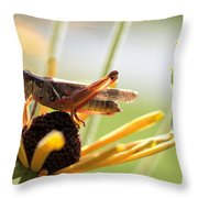 Grasshopper Antena Up Throw Pillow