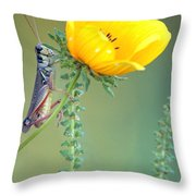Grasshopper Be Still Throw Pillow