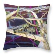 Grasshopper Piggyback Throw Pillow