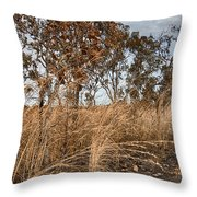 Grassroots Throw Pillow