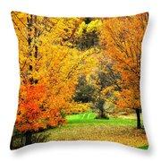 Grassy Autumn Road Throw Pillow