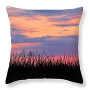 Grassy Sunset Throw Pillow