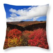 Graveyard Fields In The Mountains Throw Pillow