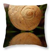 Gravity Shell Throw Pillow