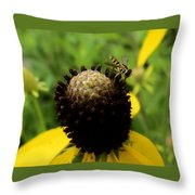 Gray Cone Flower Throw Pillow