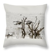 Gray Day At Whitewater Throw Pillow