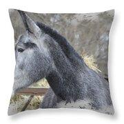 Old Gray Throw Pillow