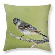 Gray Flycatcher Throw Pillow