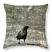 Abstract Gray Throw Pillow
