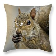 Gray Squirrel - D008392  Throw Pillow