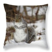 Gray Squirrel In Snow Throw Pillow