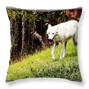 Gray Wolf 2 Throw Pillow