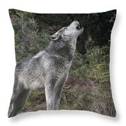 Gray Wolf Howling Endangered Species Wildlife Rescue Throw Pillow