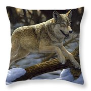 Gray Wolf - Just For Fun Throw Pillow by Crista Forest