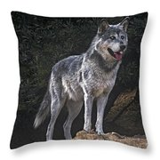 Gray Wolf On Hillside Endangered Species Wildlife Rescue Throw Pillow