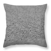 Gray World Throw Pillow