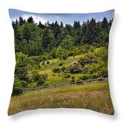 Grayson Highlands Throw Pillow