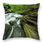 Waterfall - Grayville Everlasting Throw Pillow